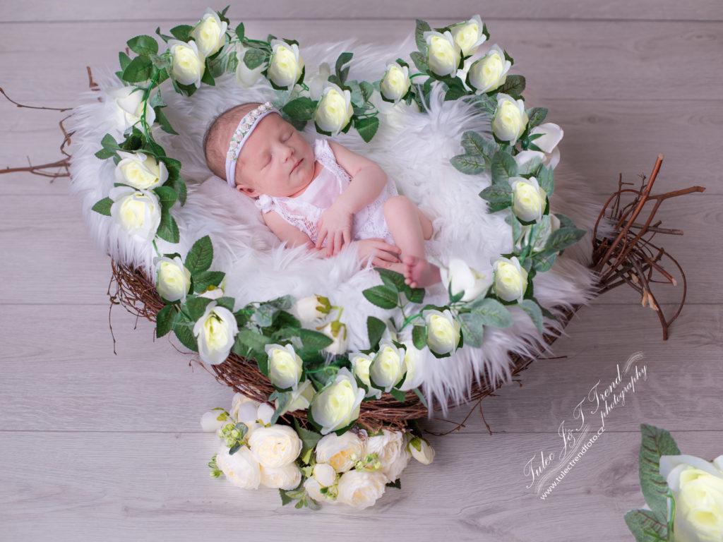 Focení novorozenců Přerov